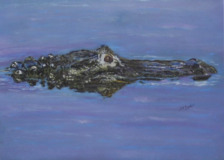 "Alligator - Pastel - Framed Original - £300 Size 17""x11"""
