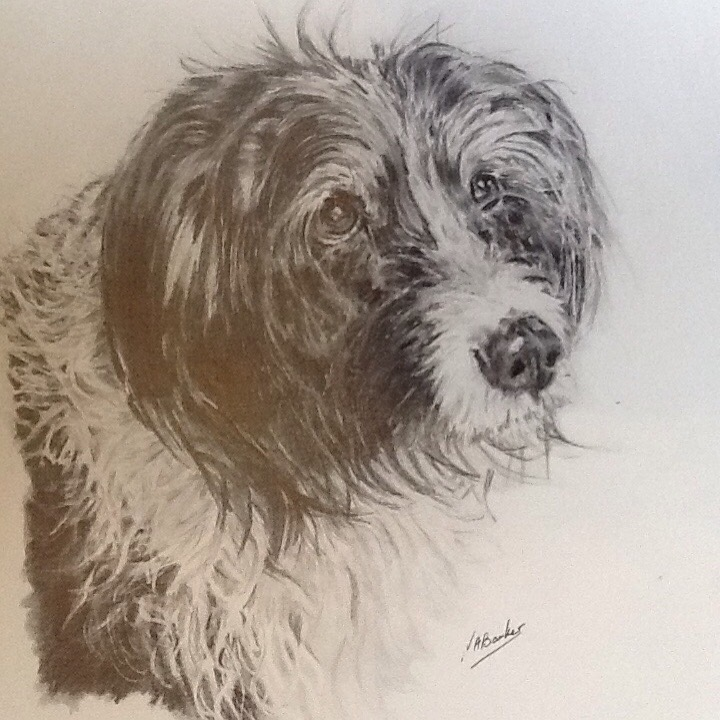 Commission - Alfie - Graphite Pencil