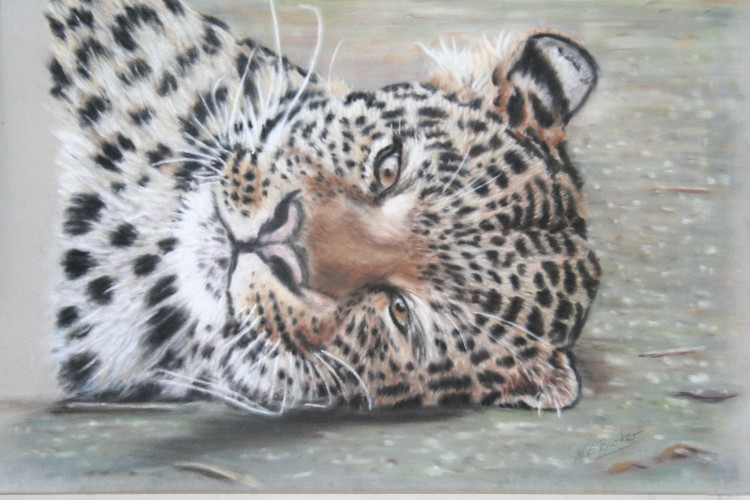 Lazy Day - Pastel on Velour - Framed Original - £200