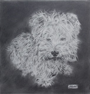 Lucy - Pencil