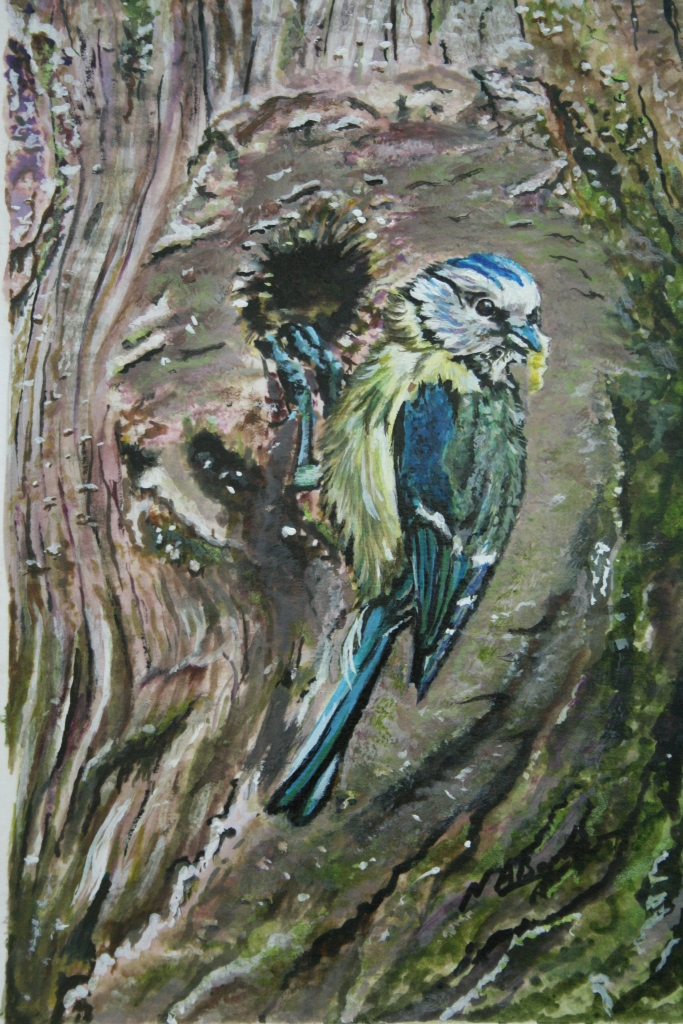 Blue Tit Feeding - Acrylic Ink - Framed Original - £100