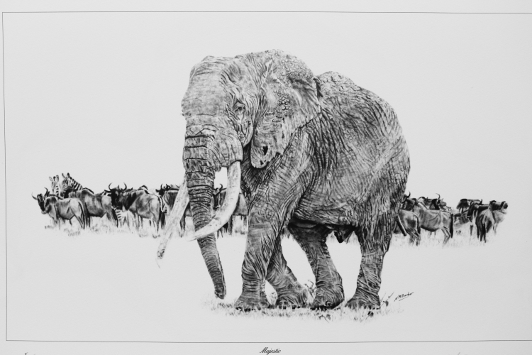 Majestic - Graphite - Framed Original - £1500