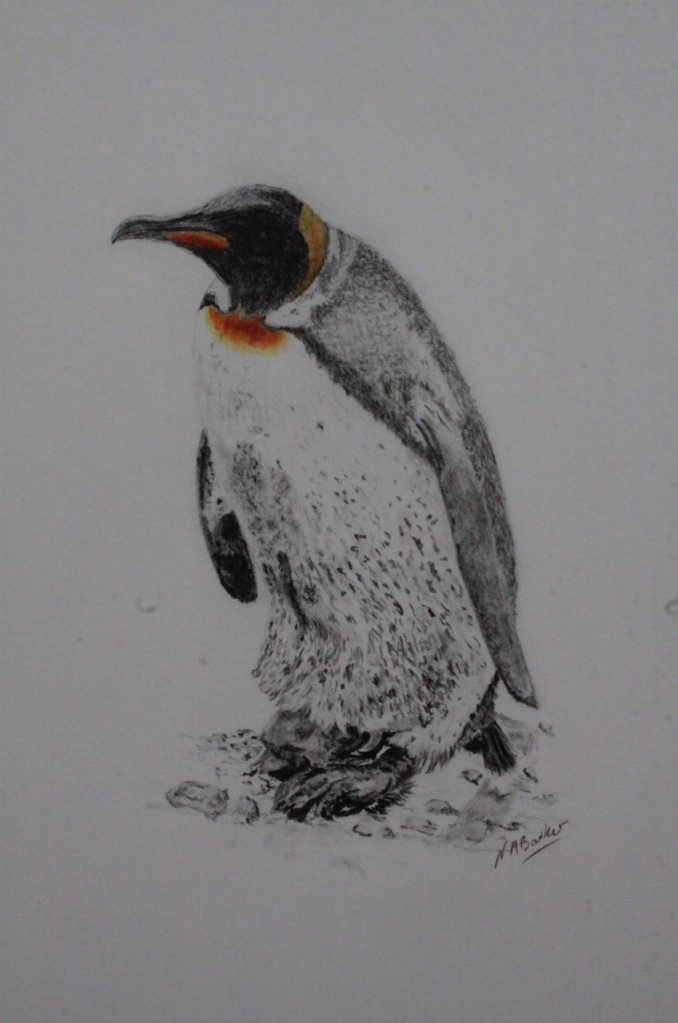 Can You See Me (Penguin I) - Graphite - Framed - £175