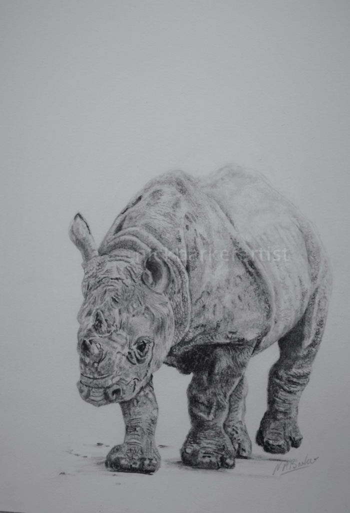 New Hope - Graphite - Unframed Original - £250