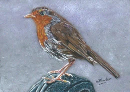 Robin II - Pastel - Framed Original - 32x26cm - £125