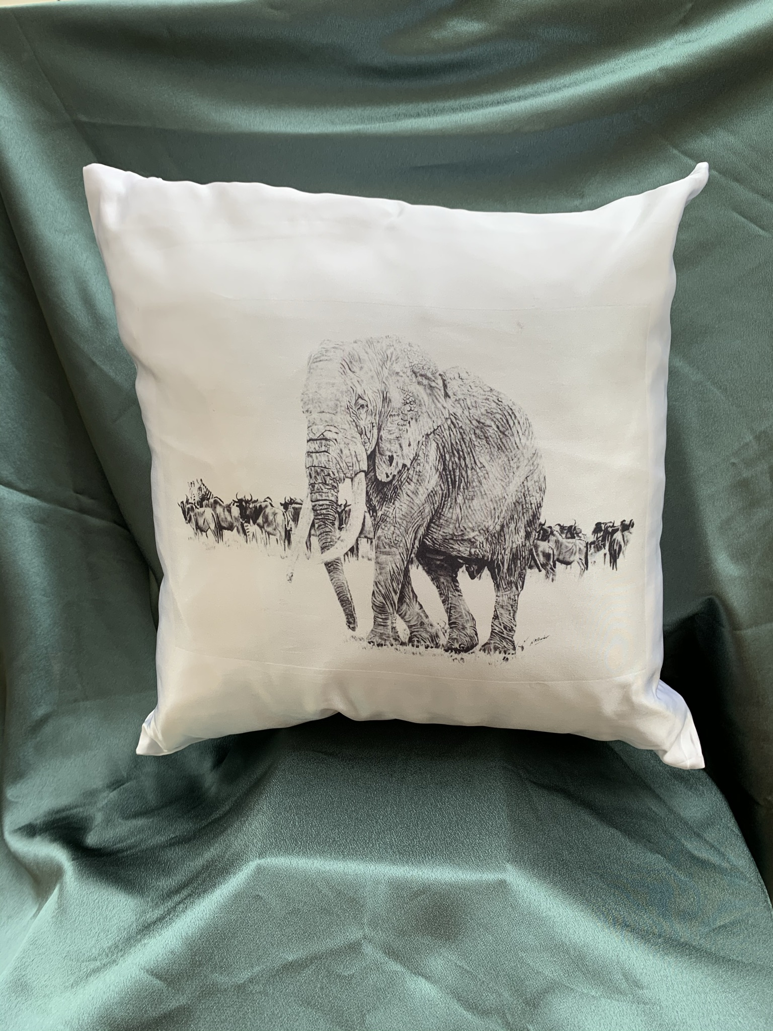 Cushion - Various Designs - Silky or Canvas Material - White or Pale Beige - £15